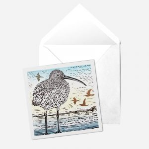 Curlew Card