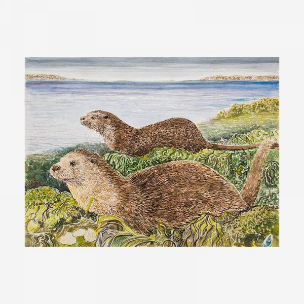 Otters at Olnafirth