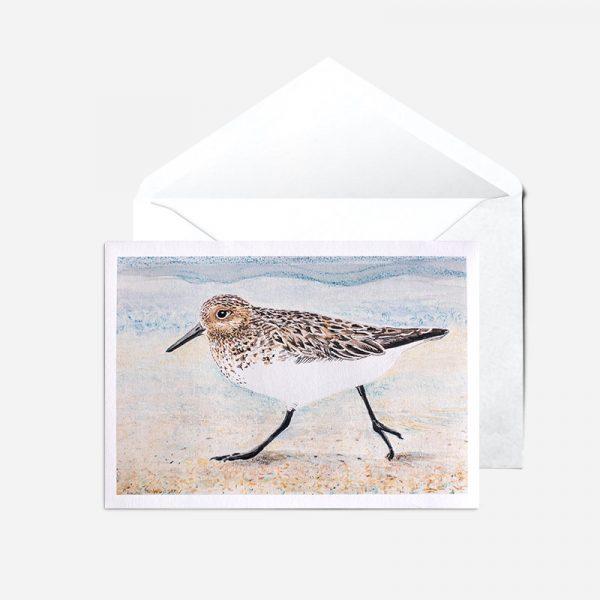 Sanderling Card